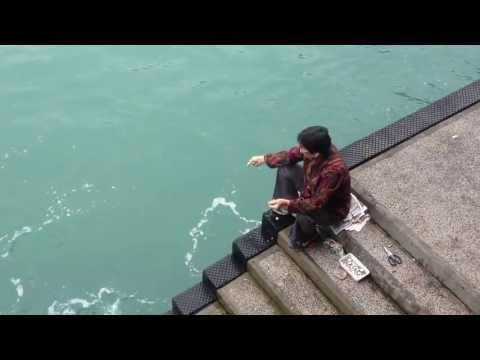 Amazing non-stop fishing woman in Hong Kong