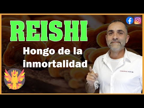 Propiedades del Reishi. El Hongo de la Inmortalidad