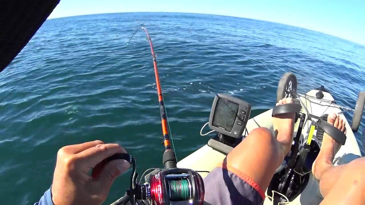Redondo Beach Kayak Fishing Bonito 11 04 2014 Youtube