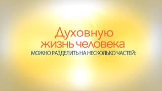 Духовную жизнь человека можно разделить на несколько частей...