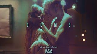 Descarca Olivia Addams - Dumb (Adrian Campo Remix)