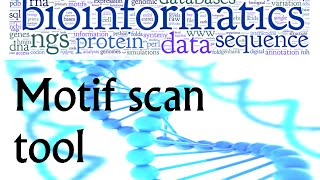 Bioinformatics practical 23 motif scan tool to identify known domains in protein sequence