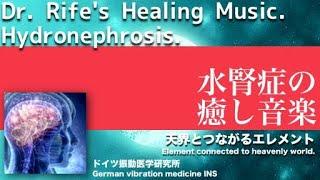🔴ドイツ振動医学による水腎症編|Hydronephrosis by German Oscillatory Medicine.