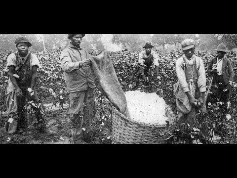 The Demonization of the Negroes(2)