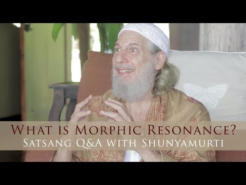 What is Morphic Resonance? Satsang Q&A with Shunyamurti