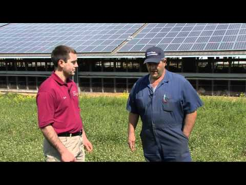 Paradise Energy Solutions   Hope Valley Farms Solar Project Interview v2