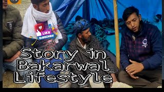 The lifestyle of Bakarwal tribes  in Labar Kargil | which  is located in between Umba and Drass