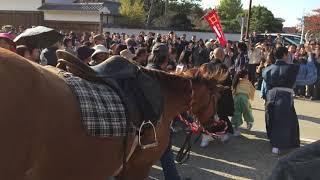NHK大河ドラマ「おんな城主 直虎」で直虎の少女時代「おとわ」役、「小...