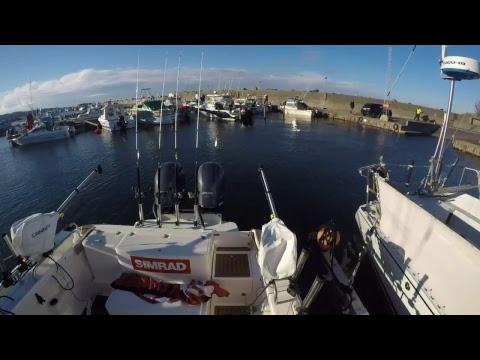 Team Denmark: Team Vertigo, Battle of the Nordics - LIVE fishing from Bornholm