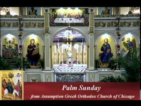 Palm Sunday Divine Liturgy 4/24/16 at Assumption Panagia Greek Orthodox Church Chicago,