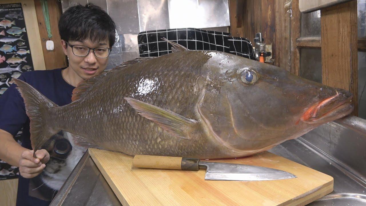 1週間熟成!漁師の巨大魚使い切り料理5品!