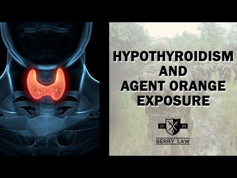 Hypothyroidism and Agent Orange Exposure | America's Veterans Law Firm
