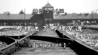 雜阿含0046經(1版)6-4哪裡迷了哪裡穿透[德藏法師]