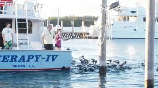 Интересные места в Майами. Жизнь в США. Флорида(, 2014-12-27T06:39:11.000Z)
