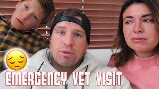 EMERGENCY VET VISIT | OUR FIRST PET IS DYING