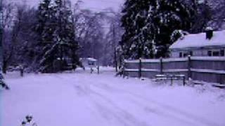 january snow1-28-09 011