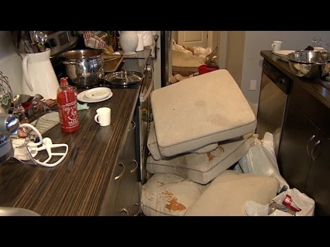 Airbnb home trashed during wild party