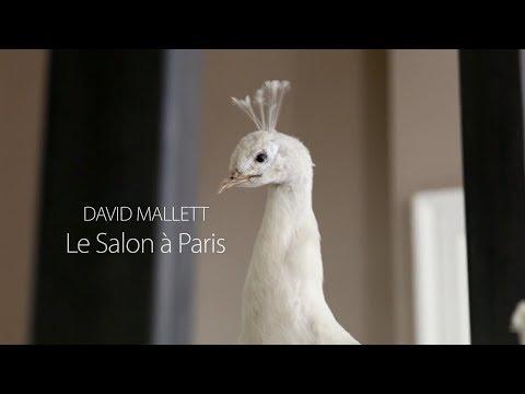 David Mallett: Le Salon à Paris