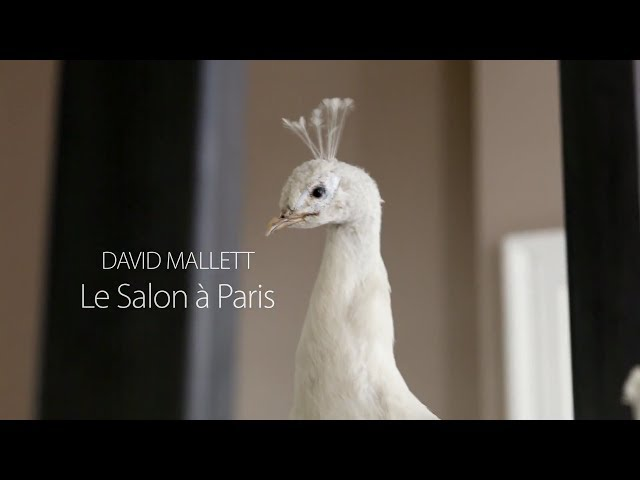 David Mallett: Le Salon à Paris