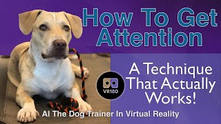 How To Get Attention! A Technique that Actually Works! In 3D Virtual Reality!
