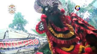 Mayangkoro Original Barongan ngamuk tak terkendali.mp3