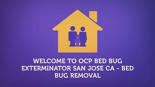 Bed Bug Exterminator In San Jose CA