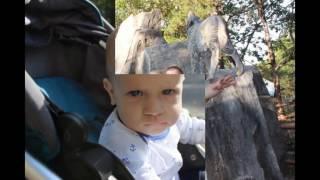 слайд шоу Первый год жизни малыша КАК ПОДРАБОТЫВАТЬ ОНЛАЙН в ДЕКРЕТНОМ ОТПУСКЕ