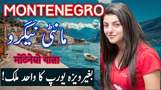 Travel To Montenegro | History Documentary in Urdu And Hindi | Spider Tv | مونٹینیگرو کی سیر