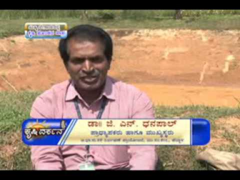 04 06 2014 role of farm ponds in rainfed agriculture dr g n dhanapal and self experience in broiler