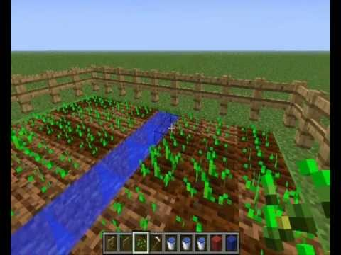 minecraft-come creare un orto! - youtube - Come Fare Un Orto