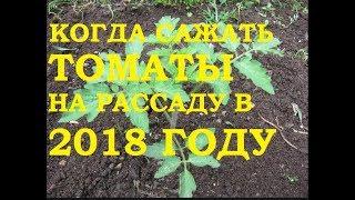 видео Посадка помидор на рассаду в 2018 году по лунному календарю