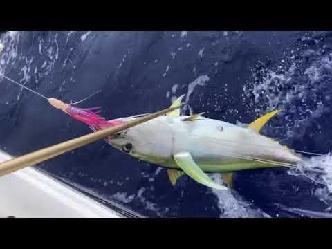 GUAM FISHING 2/18/18 (DATFishingCo)