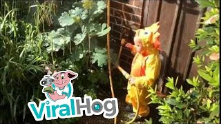 There's Something Lurking In The Garden || ViralHog