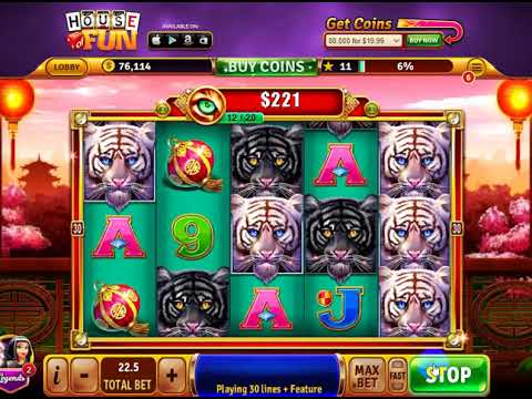 3 Tigers Slots
