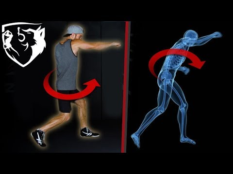 The Perfect Punch: Body Rotation Biomechanics