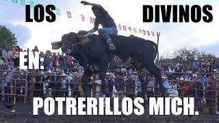 **POTRERILLOS** Los Toros Divinos & Rafaga de fuego