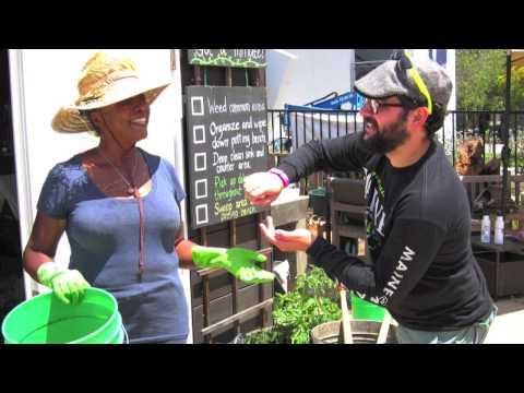 The Organic Learning Garden/Santa Monica College