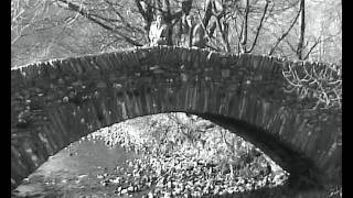 The Little Bridge Over The Stream