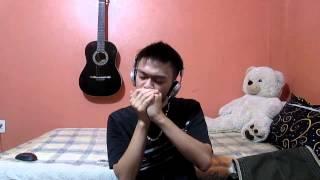 canon in c johann pachelbel harmonica cover