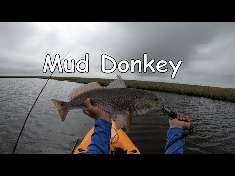 Mud Donkey, Kayak Fishing Sabine Pass TX