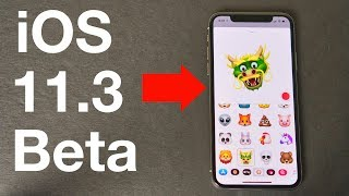 iOS 11.3 Beta - Important New Features & Changes!