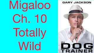 Migaloo Ch 10 Totally Wild