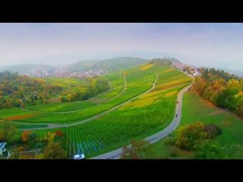 Stuttgart-Uhlbach/Rotenberg  -  AUTUMN  COLORS  -  Teaser