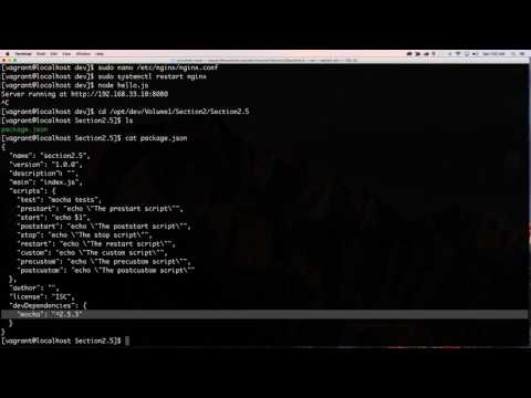 Getting Vagrant, Node Js, Nginx, and CENTOS 7 to Work Together