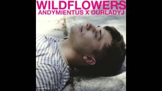 WIldflowers- Andy Mientus x Our Lady J cover (audio)