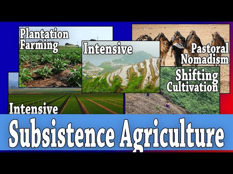 Five Types of Subsistence Agriculture [AP Human Geography: Unit 5 Topics 1 & 10]