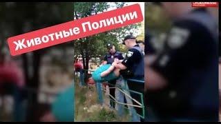 Животные Полиции