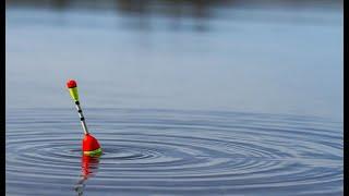 Бешеный Клев Добрая рыбалка на карася Good fishing for crucian carp