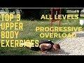 Top 3 basic upper body exercises | All levels | Progressive overload