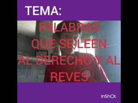 Palabras Al Derecho Y Al Reves Youtube